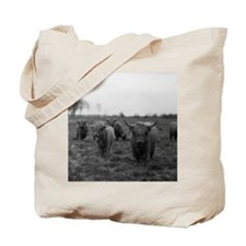 Scottish highland cattle on field, Northe Tote Bag