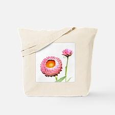 Pink Strawflowers, Japan Tote Bag