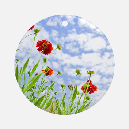 Red Sneezeweed flowers against blue Round Ornament