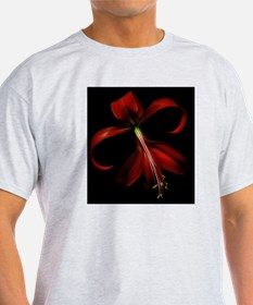 Special red lily on black background T-Shirt