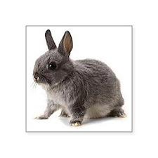 "Bunny Rabbit Square Sticker 3"" x 3"""
