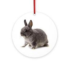 Bunny Rabbit Round Ornament