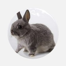 Bunny Rabbit Round Ornament