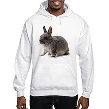 Bunny Rabbit Hoodie