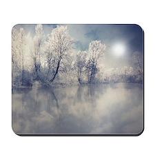 Reflection at lake. Mousepad