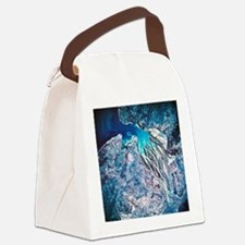 Rivers meeting the sea viewed fro Canvas Lunch Bag