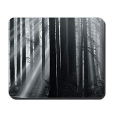 Sunlight in forest Mousepad