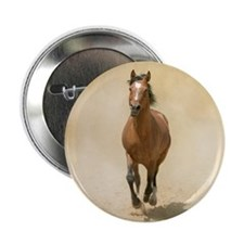 "Shagya-Arabian horse cantering throug 2.25"" Button"