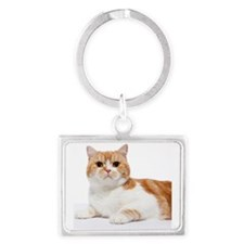 Scottish Fold Cat Landscape Keychain