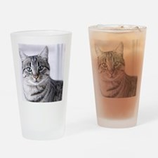 Tabby gray cat and green eyes. Drinking Glass