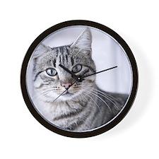 Tabby gray cat and green eyes. Wall Clock