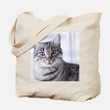 Tabby gray cat and green eyes. Tote Bag