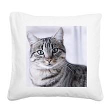 Tabby gray cat and green eyes Square Canvas Pillow