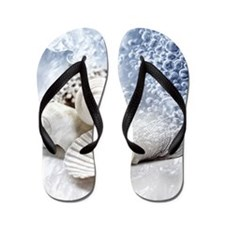 Seashells washed ashore Flip Flops