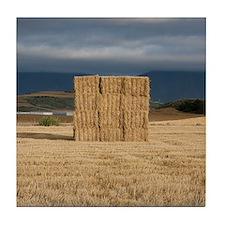 Square haystack during sunset, Navarr Tile Coaster