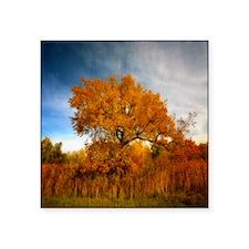 """Tree in Autumn. Square Sticker 3"""" x 3"""""""