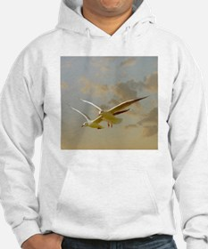 Two gulls flying in evening ligh Hoodie