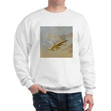 Two gulls flying in evening light again Sweatshirt