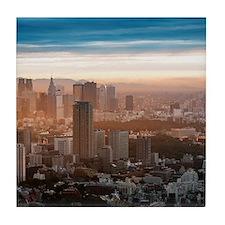 Smog settles over the Tokyo skyline a Tile Coaster