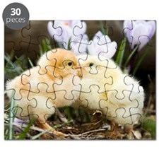Two yellow baby chicks kissing in front of Puzzle