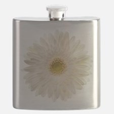 White gerbera daisy isolated on white. Flask