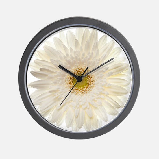 White gerbera daisy isolated on white. Wall Clock