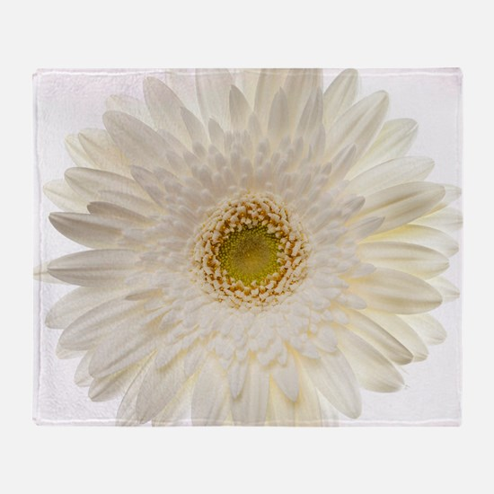 White gerbera daisy isolated on whit Throw Blanket