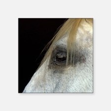 "White Horse. Square Sticker 3"" x 3"""