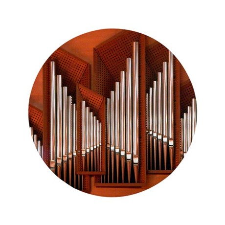 "View of right section of organ of Bilb 3.5"" Button"