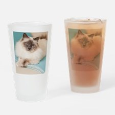 White sacred birman cat with blue e Drinking Glass