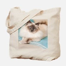 White sacred birman cat with blue eyes ly Tote Bag