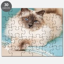 White sacred birman cat with blue eyes lyin Puzzle