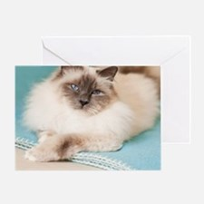 White sacred birman cat with blue ey Greeting Card