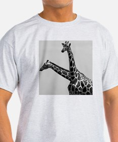 Two reticulated giraffes looking lik T-Shirt