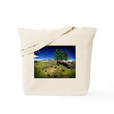 Native America Tote Bag