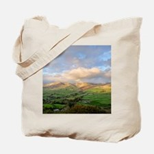 Yorkshire Dales National Park north of Se Tote Bag