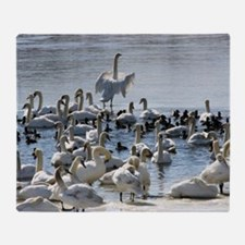 Swans Throw Blanket
