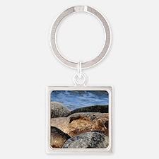 La Jolla Seals Square Keychain