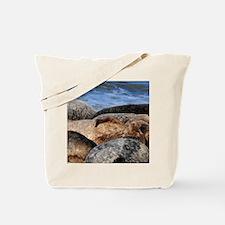 La Jolla Seals Tote Bag