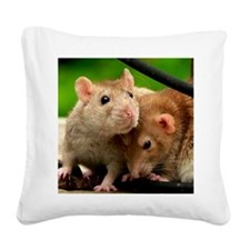 Dune and Fern Square Canvas Pillow
