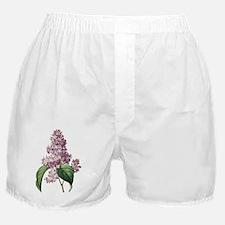 Lilac Boxer Shorts
