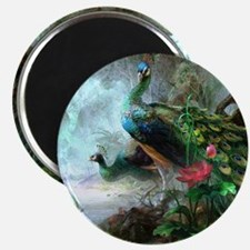 Beautiful Peacock Painting Magnet