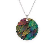 Exotic colorful feathers Necklace