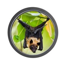 Fruit Bat Hanging In A Tree Wall Clock