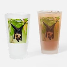 Fruit Bat Hanging In A Tree Drinking Glass