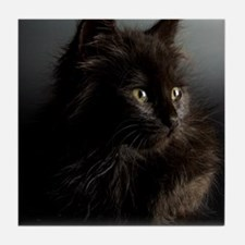Little Black Cat Tile Coaster