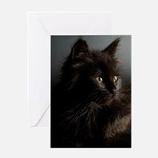 Little Black Cat Greeting Card