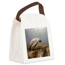 Manatee Family Canvas Lunch Bag