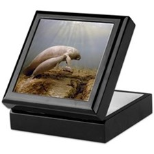 Manatee Family Keepsake Box