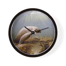Manatee Family Wall Clock